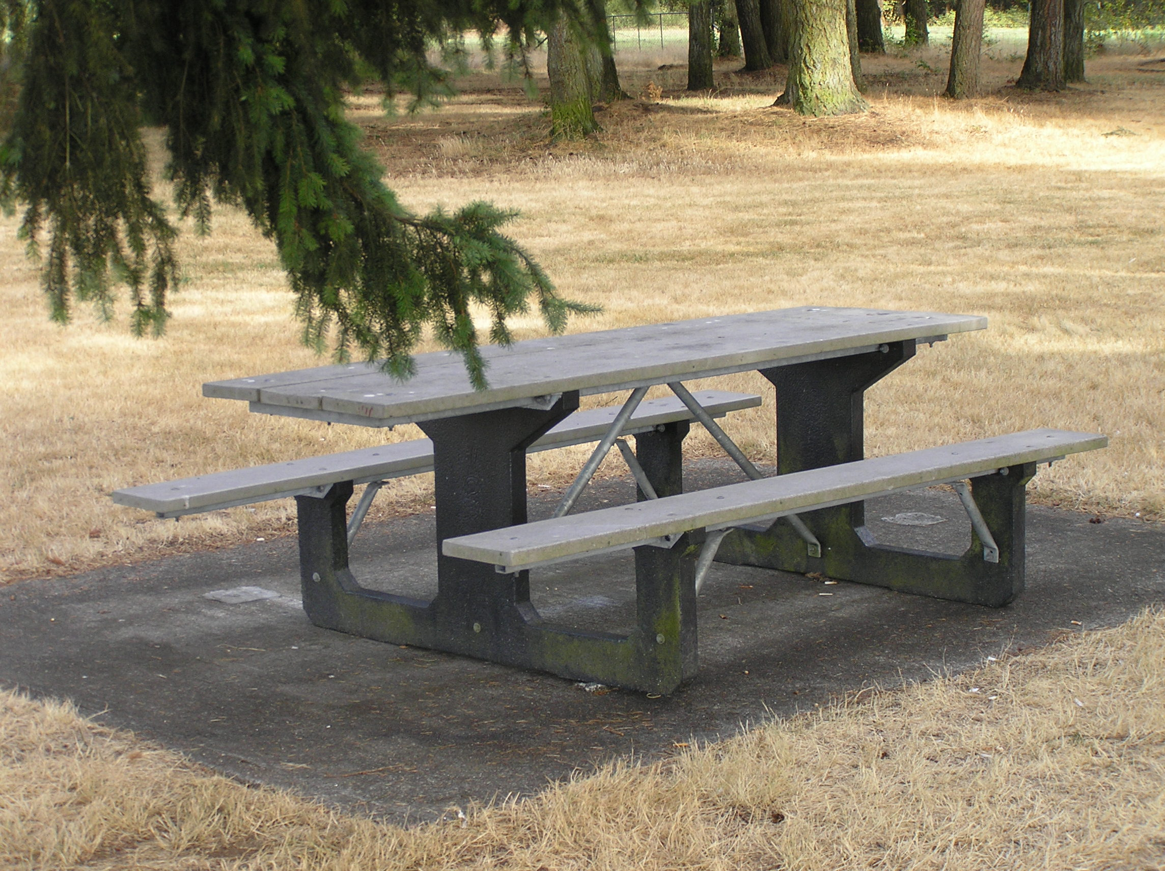 Picnic Table Park Bench Photo - Park bench and table